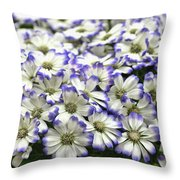 Royal Tips Throw Pillow