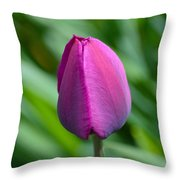 Royal Tulip Throw Pillow