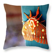 Royal Walnut Moth Throw Pillow