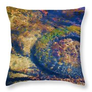 Rubber Fish Throw Pillow