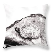 Rubbernecking Pond Turtle Throw Pillow