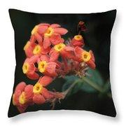 Rubiaceae Throw Pillow