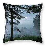 Ruby Beach II Washington State Throw Pillow