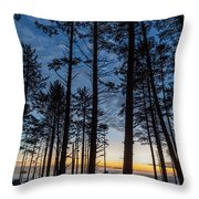 Ruby Beach Through The Trees Throw Pillow
