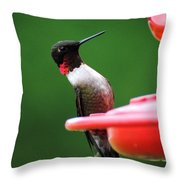 Ruby Red Throated Hummingbird On Feeder Throw Pillow