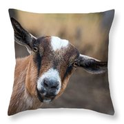 Ruby The Goat Throw Pillow