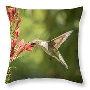 Ruby Throated Hummingbird 2-2015 Throw Pillow