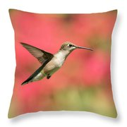 Ruby Throated Hummingbird 2016-6 Throw Pillow