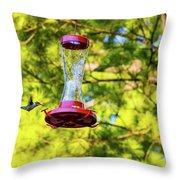 Ruby-throated Hummingbird 3 Throw Pillow
