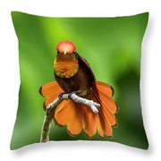 Ruby's Glory Throw Pillow