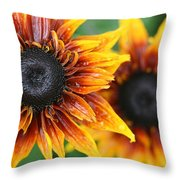 Rudbeckia - Cherokee Sunset Throw Pillow