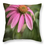 Rudbeckia Morning Throw Pillow