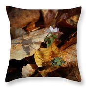 Rue Anemone At Sunrise Throw Pillow