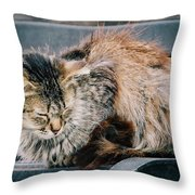 Ruffled Throw Pillow
