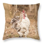 Ruffled Rooster Throw Pillow