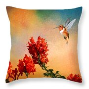 Rufous Dream Throw Pillow