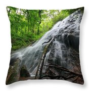 Rufus Morgan Falls Throw Pillow