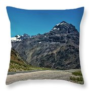 Rugged Beauty Throw Pillow