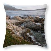 Rugged Carmel Point Throw Pillow