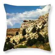 Rugged New Mexico Throw Pillow