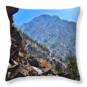 Rugged Overlook Throw Pillow