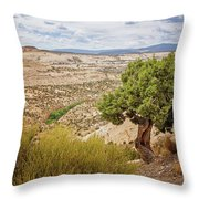 Rugged West Throw Pillow