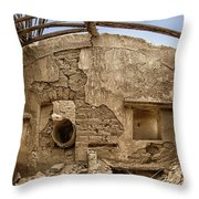 Ruin With Small Plant Throw Pillow