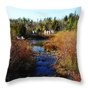 Ruins In Fall Throw Pillow