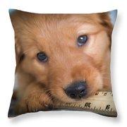 Ruler Of My Heart Throw Pillow