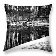 Runeberg's Fountain Throw Pillow