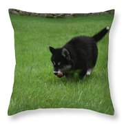 Running Alusky Puppy Licking His Nose With A Pink Tongue Throw Pillow
