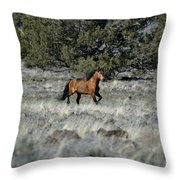 Running Bachelor Stallion Throw Pillow