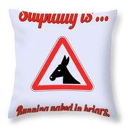 Running Bigstock Donkey 171252860 Throw Pillow