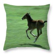 Running Colt Throw Pillow