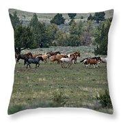 Running Wild Horses  Throw Pillow