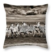 Running Zebras, Serengeti National Throw Pillow by Carson Ganci