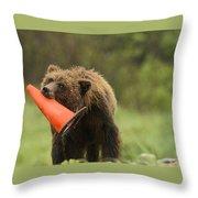 Runway Bear 2012 Throw Pillow