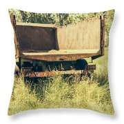 Rural Atmosphere Throw Pillow