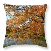 Rural Autumn Country Beauty Throw Pillow