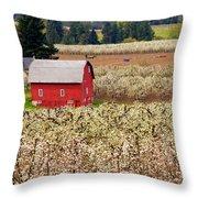 Rural Color Throw Pillow