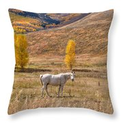 Rural Colorado  Throw Pillow