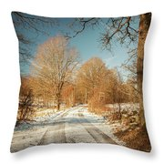 Rural Country Road Throw Pillow
