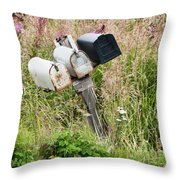 Rural Delivery No 4 Throw Pillow