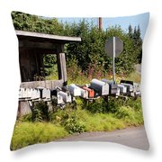 Rural Delivery No 6 Throw Pillow