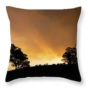 Rural Glory Throw Pillow