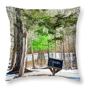 Rural Mailbox In The Snow 1 Throw Pillow
