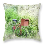 Rural Mailbox Throw Pillow