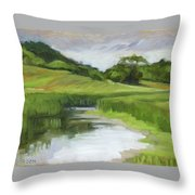 Rural Marsh Throw Pillow