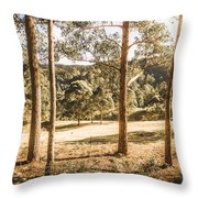 Rural Paddock In Australian Countryside Throw Pillow