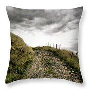Rural Path Throw Pillow